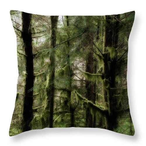 Oregon Throw Pillow featuring the photograph Oregon Old Growth Coastal Forest by Renee Hong