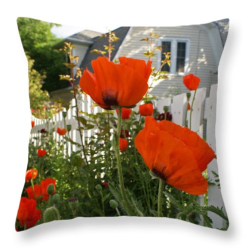 Poppies Throw Pillow featuring the photograph Oriental Poppies by Heather Coen