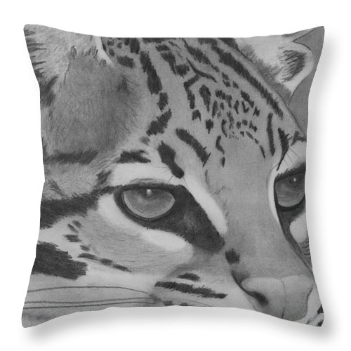 Wildlife Cat Oselot Drawing Blackandwhite Portrait Throw Pillow featuring the drawing Oselot by Eileen Blair