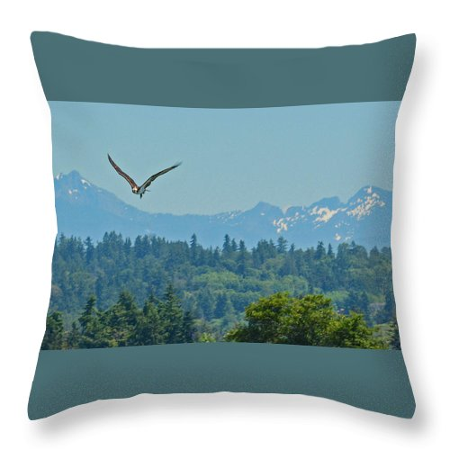 Ospry Throw Pillow featuring the photograph Ospry Flight by Trina Huston