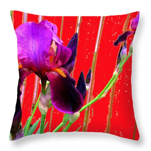 Iris Throw Pillow featuring the photograph Other Side Of The Fence by Ian MacDonald