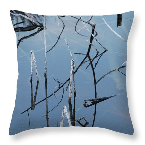 Wood Throw Pillow featuring the photograph Out From The Water by Rob Hans