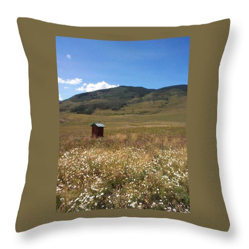 Charity Throw Pillow featuring the photograph Out House by Mary-Lee Sanders