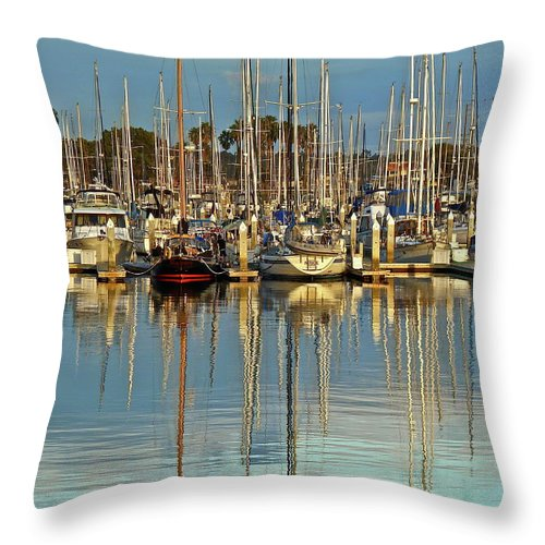 Boat Throw Pillow featuring the photograph Out Of The Ordinary by Diana Hatcher