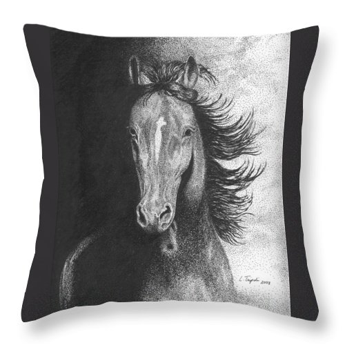 Horse Throw Pillow featuring the drawing Out Of The Shadows by Lawrence Tripoli