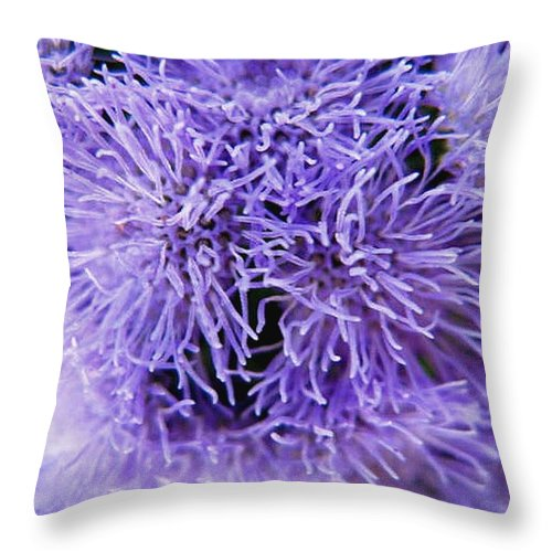 Floral Throw Pillow featuring the photograph Out Of This World by Rhonda Barrett