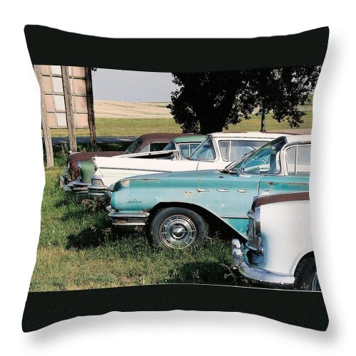 Rural Throw Pillow featuring the photograph Out To Pasture by Lauri Novak