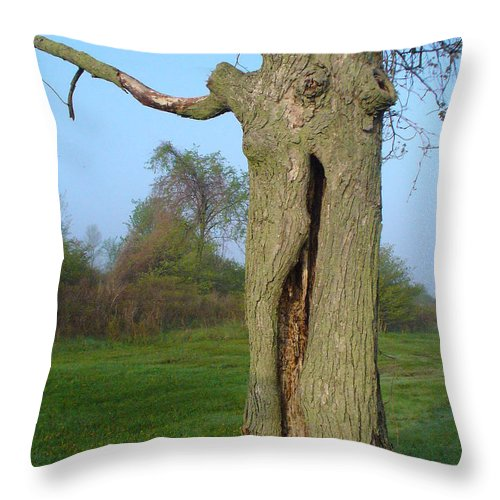 Tree Throw Pillow featuring the photograph Outstanding In Her Field by Peggy King