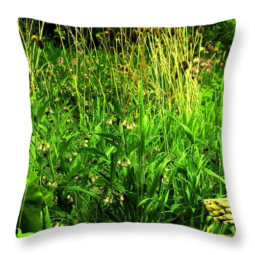 Fence Throw Pillow featuring the photograph Over The Fence by Ian MacDonald