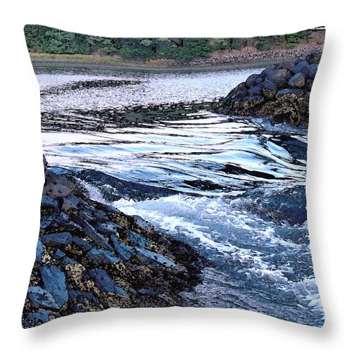 Water Throw Pillow featuring the photograph Overflow by Suzanne Gaff