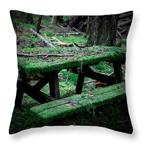 Picnic Throw Pillow featuring the photograph Overgrown by Danielle Silveira