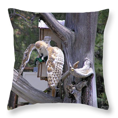 Throw Pillow featuring the photograph Owl Takeoff by Louise Magno