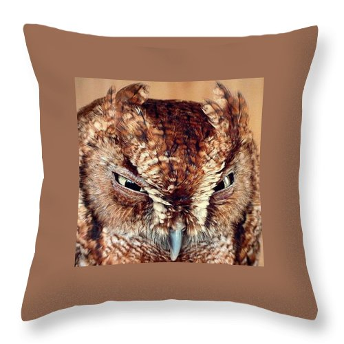 Owl Throw Pillow featuring the photograph Owl Who? -brown Owl by Adrian DeLeon