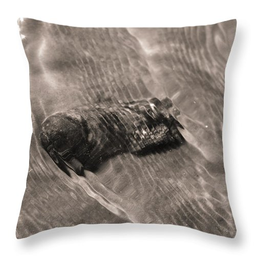 Oyster Shell Throw Pillow featuring the photograph Oyster Shell In Water by Dustin K Ryan