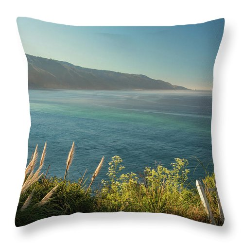 Pacific Throw Pillow featuring the photograph Pacific Ocean, Big Sur by Dana Sohr