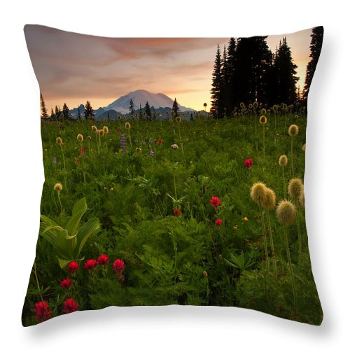 Sunset Throw Pillow featuring the photograph Paintbrush Sunset by Mike Dawson