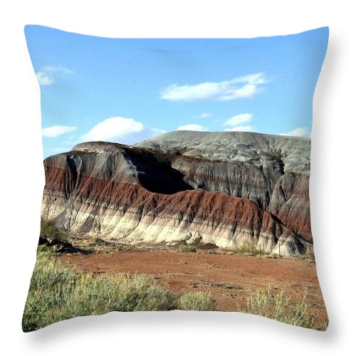 Arizona Throw Pillow featuring the photograph Painted Desert by Will Borden