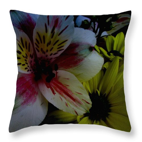 Art For The Wall...patzer Photography Throw Pillow featuring the photograph Painted Lily by Greg Patzer