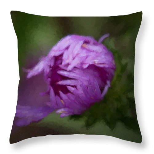 Aster Throw Pillow featuring the photograph Painted Purple Aster by Cathy Donohoue
