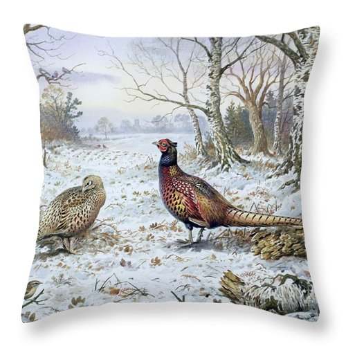 Game Bird; Snow; Woodland; Perdrix; Faisan; Troglodyte; Pheasant; Pheasants; Tree; Trees; Bird; Animals Throw Pillow featuring the painting Pair Of Pheasants With A Wren by Carl Donner