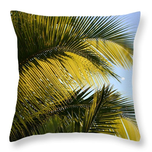 Palm Tree Throw Pillow featuring the photograph Palm Detail by Corinne Rhode