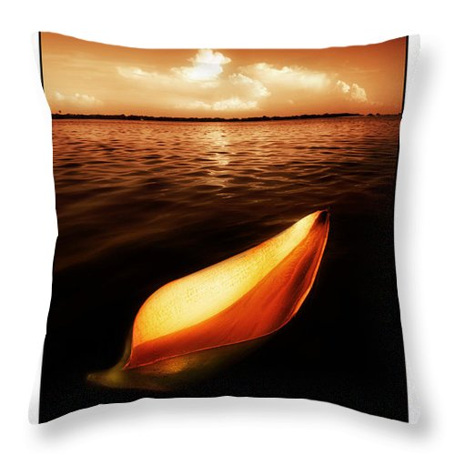 Palm Throw Pillow featuring the photograph Palm Leaf Sheath Boat by Mal Bray