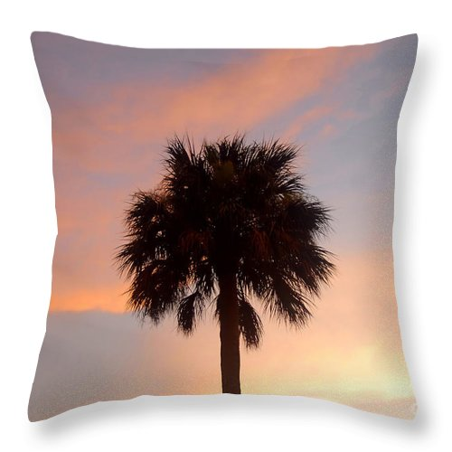 Palm Tree Throw Pillow featuring the photograph Palm Sky by David Lee Thompson