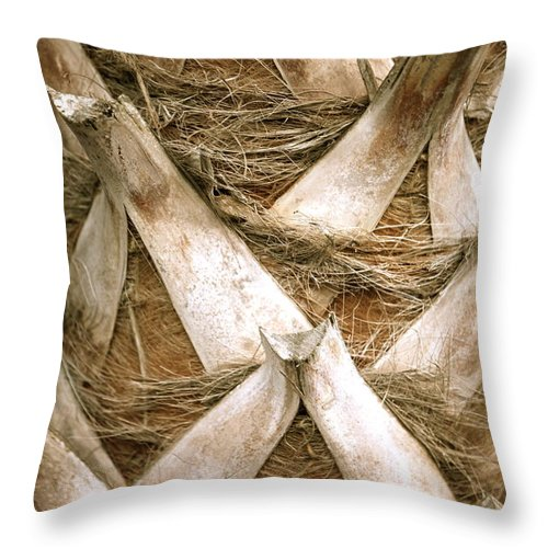 Bark Throw Pillow featuring the photograph Palm Tree Bark by Nadine Rippelmeyer