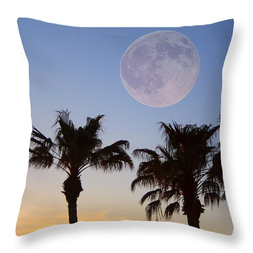 Palm Throw Pillow featuring the photograph Palm Tree Full Moon Sunset by James BO Insogna