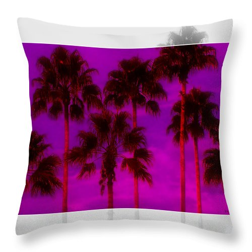 Palm Throw Pillow featuring the photograph Palm Tree Heaven by Kenneth Krolikowski
