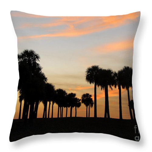 Palm Trees Throw Pillow featuring the photograph Palms At Sunset by David Lee Thompson