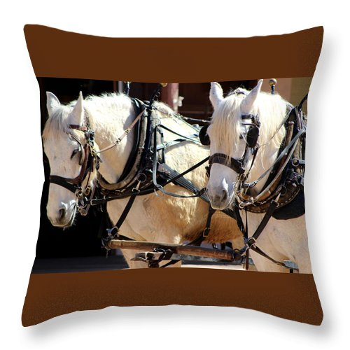 Palomino Horses Pulling Carriage Throw Pillow featuring the photograph Palomino Horses by Colleen Cornelius