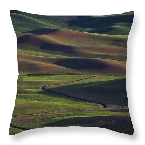 Wheat Throw Pillow featuring the photograph Palouse Abstract 1 by Mark Kiver