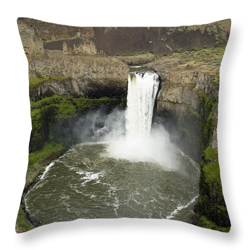 Falls Throw Pillow featuring the photograph Palouse Falls State Park by Louise Magno