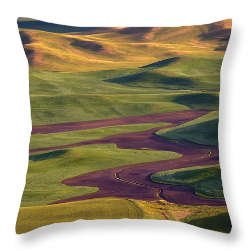 Palouse; Hills Throw Pillow featuring the photograph Palouse Hills by Mike Dawson