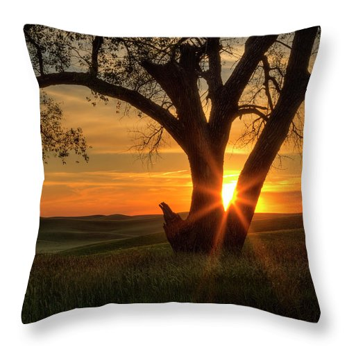 Washington State Throw Pillow featuring the photograph Palouse Sentinel by Mark Kiver