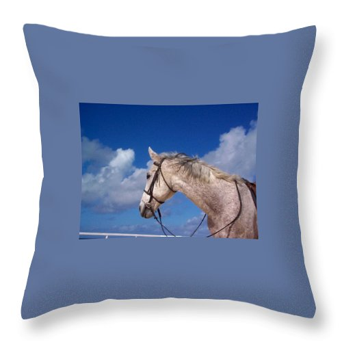 Charity Throw Pillow featuring the photograph Pancho by Mary-Lee Sanders