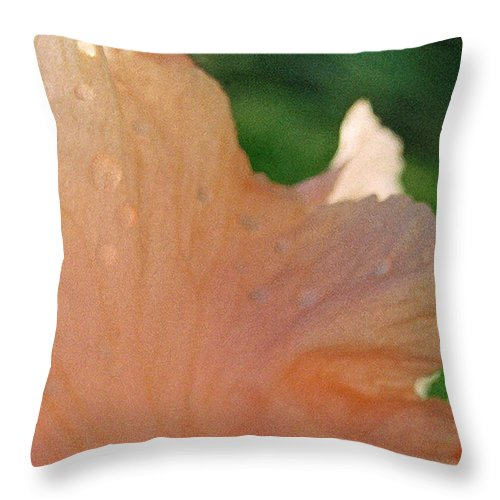 Abstract Throw Pillow featuring the photograph Panel Three From Iris by Steve Karol