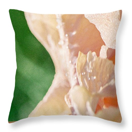 Abstract Throw Pillow featuring the photograph panel two from Iris by Steve Karol