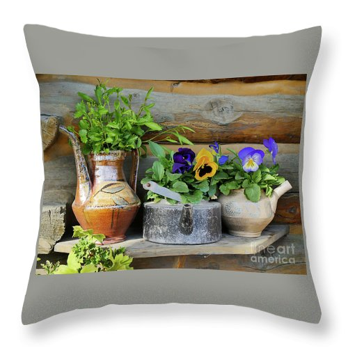 Flowers Throw Pillow featuring the photograph Pansies In Pots by Maxine Kamin