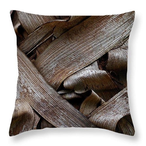 Bark Throw Pillow featuring the photograph Paper Bark by Murray Bloom