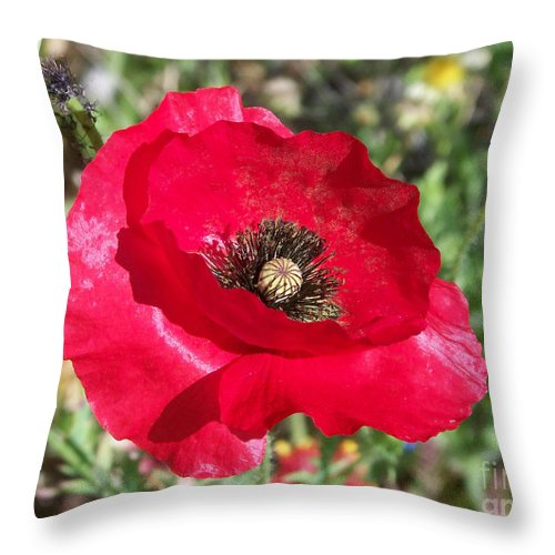 Red Throw Pillow featuring the photograph Paper Flower by Kathy McClure