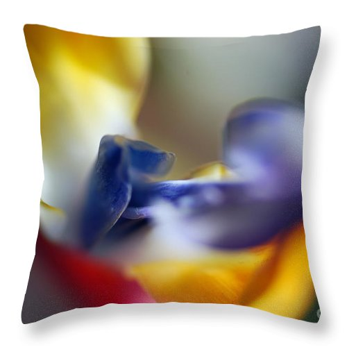 Macro Throw Pillow featuring the photograph Paradise by Catherine Lau