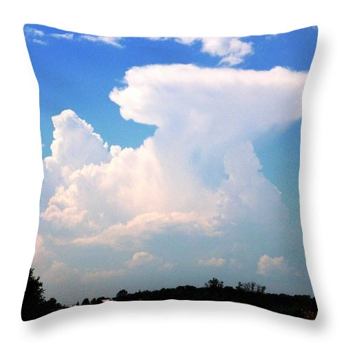 Nature Throw Pillow featuring the photograph Paradox by Peggy King