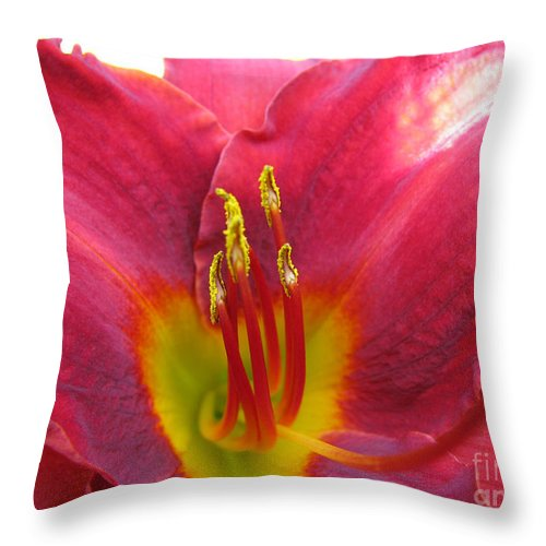 Pardon Me Lilly Throw Pillow featuring the photograph Pardon Me by Amanda Barcon