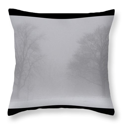 Fog Throw Pillow featuring the photograph Park In Winter Fog by Tim Nyberg