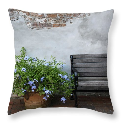 Bench Throw Pillow featuring the photograph Park It by Lauri Novak