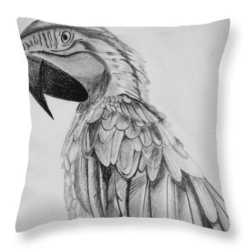 Throw Pillow featuring the drawing Parrot by Anirudh Maheshwari