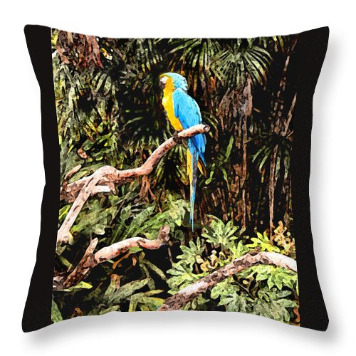 Parrot Throw Pillow featuring the photograph Parrot by Steve Karol