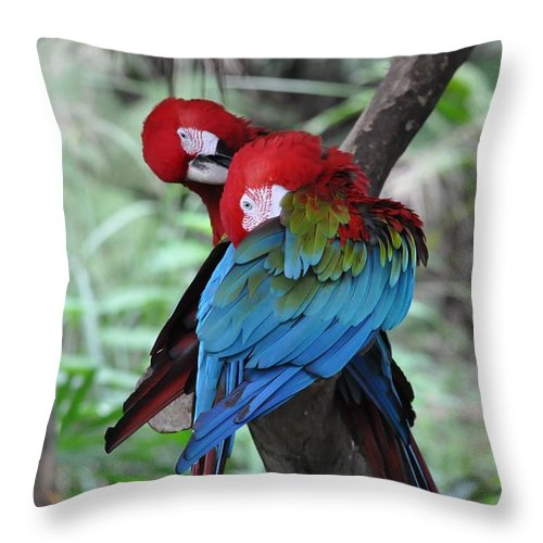 Parrot Throw Pillow featuring the photograph Parrots by FL collection